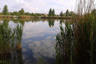 Horgásztábor